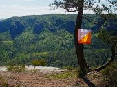 White Orange Flag Marks Checking Point For Orienteering Run Hangs On Tree In Difficult Forest And Ro poster