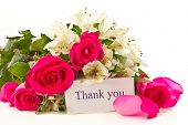 stock photo of thank you card  - red roses and white Alstroemeria on a white background - JPG