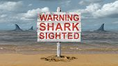 Shark Warning Sign And Beware Of Sharks Signage On A Beach With 3d Illustration Elements. poster