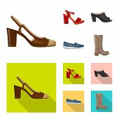 Vector Illustration Of Footwear And Woman Icon. Collection Of Footwear And Foot Stock Symbol For Web poster
