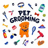 Pet Grooming Concept. Happy Little Dog, Pet Grooming Lettering And Goods For Grooming On White Backg poster