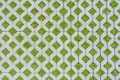 Geometric Background Of Eco Floor Bricks And Green Grass. Eco Parking Texture. Floor Stone Tile With poster