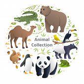 Vector Collection Funny Animals, Cute Animals In Cartoon Style. Crocodile, Bear, Camel, Bird, Squirr poster