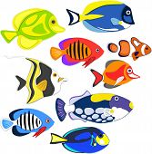 Reef Fishes In Paper Art Style. Colorful Exotic Aquarium Fauna Vector Illustration. Marine Ecosystem poster