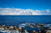 Lofoten islands and Norwegian sea in winter with snow covered mountains. Lofoten islands, Norway poster