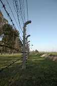 Barbed Wire Fence, Auschwitz Concentration Camp