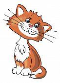 Desenho animado gatinho