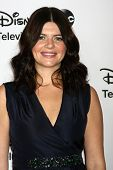 LOS ANGELES - JAN 10:  Casey Wilson attends the ABC TCA Winter 2013 Party at Langham Huntington Hote