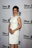 LOS ANGELES - JAN 10:  Bellamy Young attends the ABC TCA Winter 2013 Party at Langham Huntington Hot