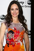 LOS ANGELES - JAN 10:  Madeleine Stowe attends the ABC TCA Winter 2013 Party at Langham Huntington H