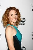 LOS ANGELES - JAN 10:  Katie Leclerc attends the ABC TCA Winter 2013 Party at Langham Huntington Hot