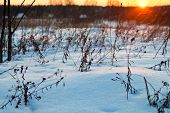 Sunset Under Snowy Country Field