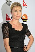 LOS ANGELES - JAN 12: Radha Mitchell at the 2013 G'Day USA Los Angeles Black Tie Gala at JW Marriott on January 12, 2013 in Los Angeles, California