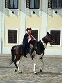 Kravat regiment cavalier