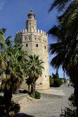 Torre del Or  Golden Tower , Seville, Spain