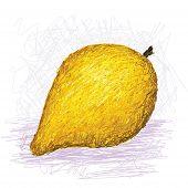 Canistel Fruit, Eggfruit