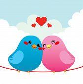 Loving Bird Couple