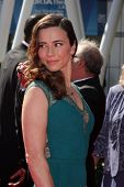 LOS ANGELES - SEP 15:  Linda Cardellini at the Creative Emmys 2013 - Arrivals at Nokia Theater on September 15, 2013 in Los Angeles, CA
