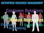 ERM Enterprise Resource Management planning financial supply chain people