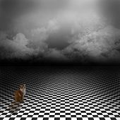 Ginger cat sitting in empty, dark, psychedelic image with black and white checker floor
