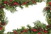 Christmas floral background border with holly, mistletoe, ivy, fir leaf sprigs and pine cones over white.