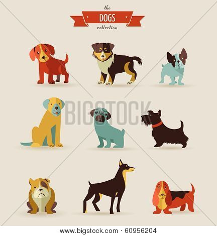 Dogs vector set of icons and illustrations poster