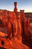 Bryce Canyon Sunrise On Thor's Hammer Utah