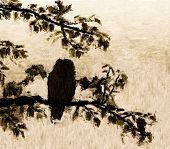Painting of an owl silhouette roosting in a tree