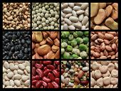 stock photo of green pea  - Collage showing different kind of beans like green peas - JPG