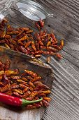 Red Fresh And Dried Chili Peppers