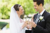 Romantic newlywed couple toasting champagne in park