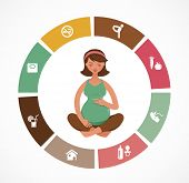 Pregnancy and birth infographics and icon vector set