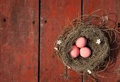 pink easter eggs on the red wooden table nest