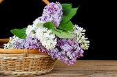 The lilac bouquet in a wattled basket