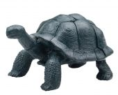 Realistic Toy Turtle Isolated