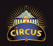 Fantastic Circus big top. A circus sign with a big top in the night for your entertainment
