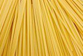 raw spaghetti poster