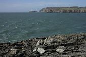 stock photo of anglesey  - A view from rocks across a bay to south stack lighthouse in the distance Wales coast path Anglesey Wales uk.