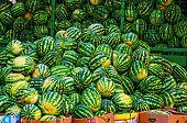 Watermelon Pile