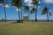 Lifeguard tower in North Shore