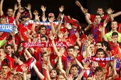 BARCELONA - MAY, 11: Osasuna supporters celebrating goal during a Spanish league match against RCD E