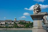 Chain Bridge Budapest Hungary With Old Palace In The Background