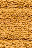 Yellow Wool Texture