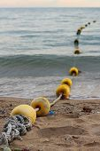 Buoys On The Beach