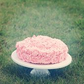 Pink birthday cake in Grass - Instagram effect