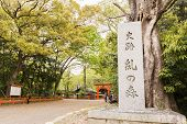 KYOTO, JAPAN - APRIL 20th : The stone monument to world heritage Tadasu No Mori(Shimogamo Shrine)  i