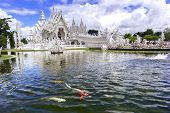 Fountain, Fishes, Temple. Wat Rong Khun.