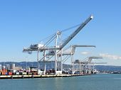 Row Of Cargo Cranes Tower Over Shoreline In Oakland Harbor On A Nice Day With Oakland And Surroundin