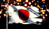 Japan National Flag Torn Burned War Freedom Night 3D