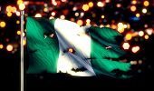 Nigeria National Flag Torn Burned War Freedom Night 3D